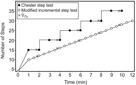 graph for chester step test calculations